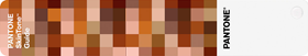 PANTONE SKIN TONE
